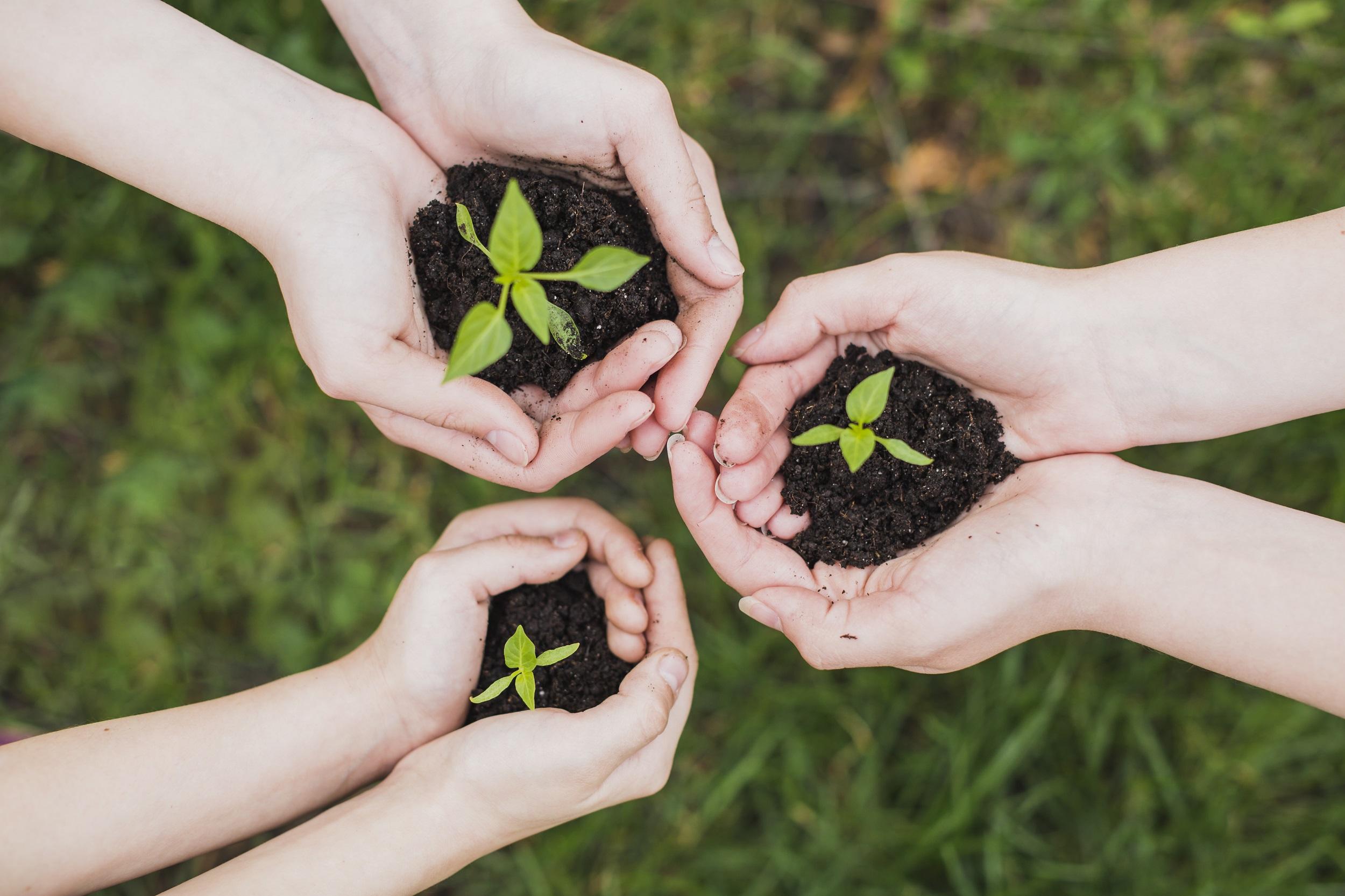 Humanidade atinge limite do uso sustentável dos recursos naturais ...